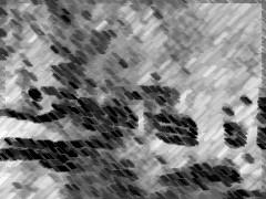 20071001114556-j.jpg