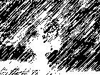 20080108075538-im..jpg