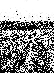 20081117091021-topico.tierra.instituyente.jpg