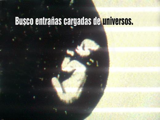 20110919170933-busco.jpg